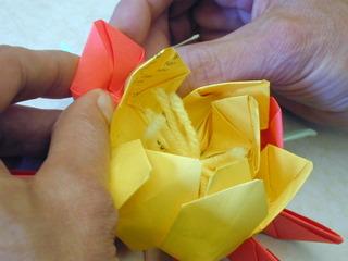 Lotus Flower Folding